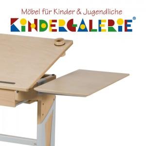 MOIZI Zubehör Schreibtisch • Tischplattenerweiterung links / rechts